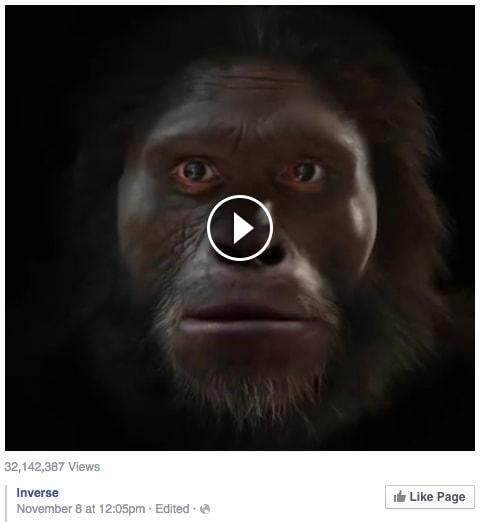 Inverse FaceBook media